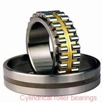 20 mm x 52 mm x 15 mm  FBJ NUP304 cylindrical roller bearings